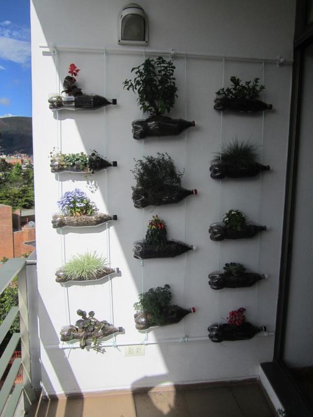 plantas para jardim vertical de garrafa petDecorame – Jardim